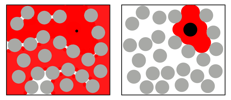 A schematic diagram of a solvent region (red) accessed by two molecules of different sizes (black circles) in a solution containing a high concentration of a polymer (grey circle).