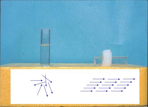 コラーゲン溶液中におけるコラーゲン分子の配向およびゲル化