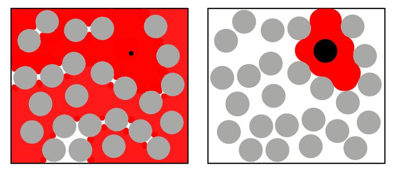 高濃度の高分子(灰色丸)が存在する溶液中での、サイズの異なる二つの分子(黒丸)がアクセス可能な溶媒領域(赤色)の模式図。